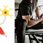 筋力トレーニングによる神経系の活性化